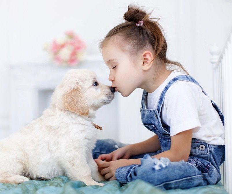 comment-bien-vermifuger-son-chien